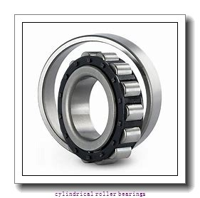 3.74 Inch | 95 Millimeter x 6.693 Inch | 170 Millimeter x 1.693 Inch | 43 Millimeter  TIMKEN NJ2219EMA  Cylindrical Roller Bearings