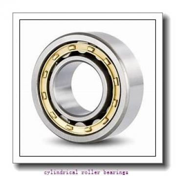 3.543 Inch | 90 Millimeter x 5.512 Inch | 140 Millimeter x 0.945 Inch | 24 Millimeter  SKF NU 1018 M/C4VA301  Cylindrical Roller Bearings