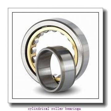 1.772 Inch | 45 Millimeter x 2.953 Inch | 75 Millimeter x 0.63 Inch | 16 Millimeter  SKF NU 1009 ECP/C3  Cylindrical Roller Bearings