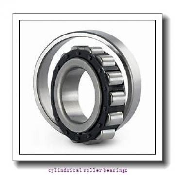 1.181 Inch | 30 Millimeter x 2.441 Inch | 62 Millimeter x 0.787 Inch | 20 Millimeter  SKF NUP 2206 ECP/C3  Cylindrical Roller Bearings